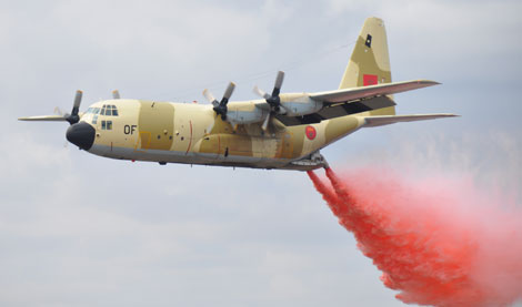 FRA: Photos d'avions de transport - Page 12 Aeroshow10_756119279