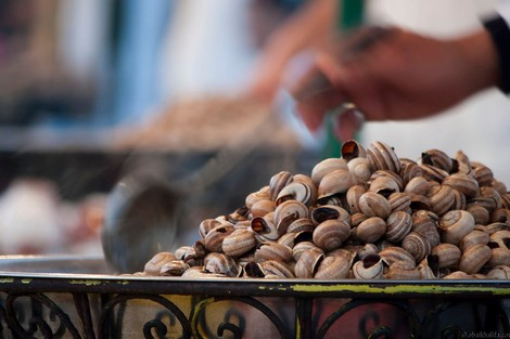 المغاربة يستمتعون بطعم الحلزون...على طريقتهم Esgargotnew_433759069