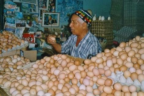 المغاربة يستهلكون 18 مليون بيضة يوميًا خلال رمضان Oeufsmarocnew_459098113