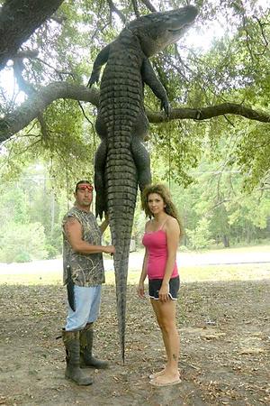 Crocodilo do Nilo VS Aligator Gator_0911
