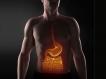 மனித உடலைப் பற்றிய சில சுவாரஸ்ய தகவல்கள்!!!  03-1404372236-4-gastrointestinal