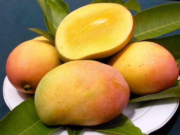 பழங்கள் பல விதம் ஒவ்வொன்றும் ஒரு விதம்.. 03-mango-600