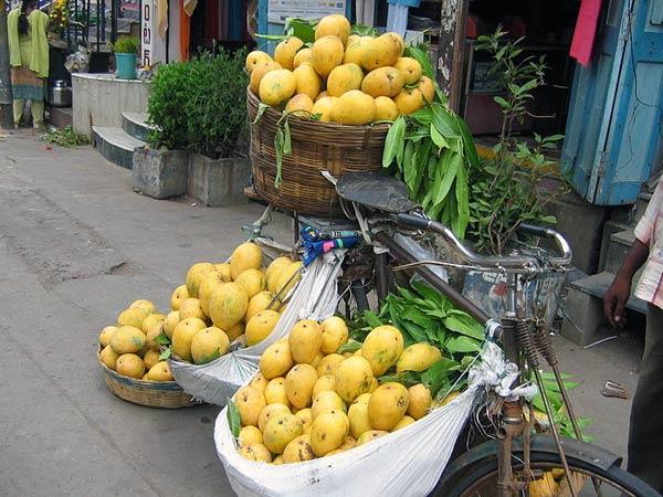 நாவில் நீர் ஊற வைக்கும் சில இந்திய மாம்பழங்கள்!!! 11-1370945946-baiganpalli-mango--600