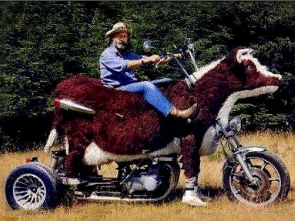 விசித்திரப்படங்கள்.அறிவோம் வாருங்கள்..!! - Page 2 25-1359113795-weird-bike-20