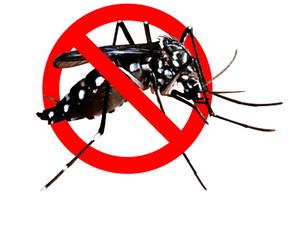 Aplikasi Pengusir Nyamuk !! Anti_mosquito11