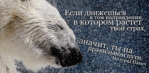 подборка от стасевича - Страница 2 Aforizm002