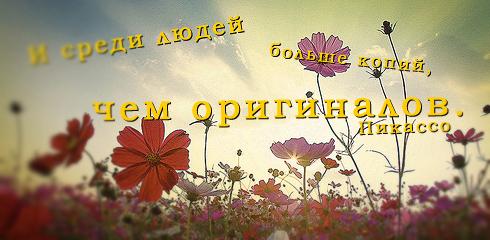 афоризмы и цитаты в картинках 33
