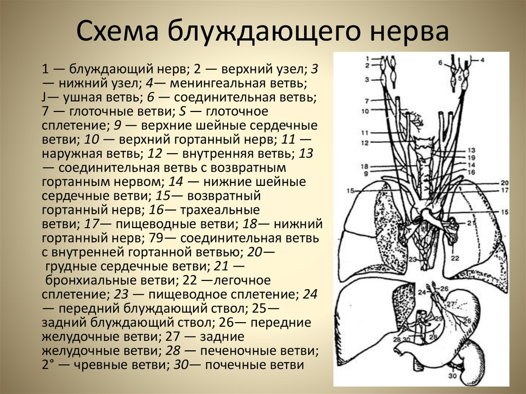 Практическая диагностика. Экзорцизм. Открытие 3-го глаза. Повышение вибраций. - Страница 23 A4eea7adc9fbb1e67dbe178f8c0ddea3