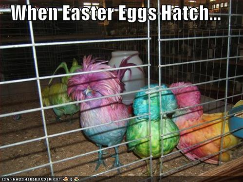 Funny Pictures - Page 5 Funny-pictures-adult-humor-easter-i5