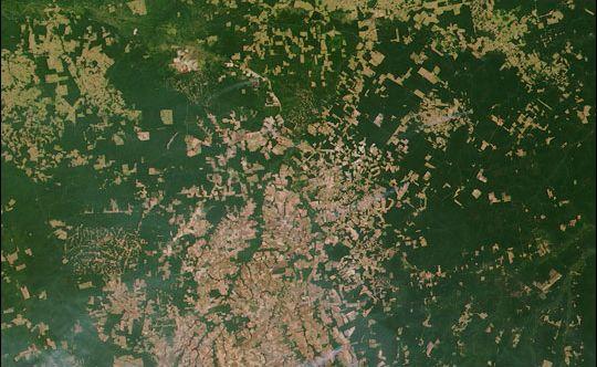La Terre vue de l'Espace Amazonie-2002