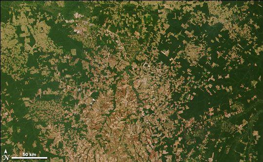 La Terre vue de l'Espace Amazonie-2006