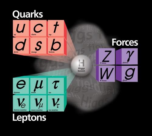 Comprendre la masse avec la découverte du boson de HIGGS - Page 3 Fermilab-particules-H