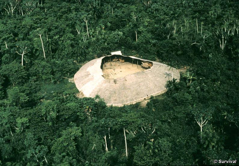 Noticias de Interes General. - Página 19 Yanomami-maloca_screen