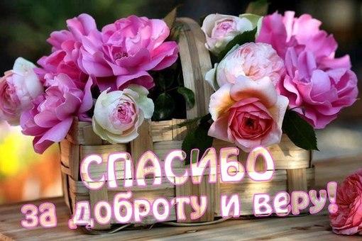 Re: Тельбуков Павел. 17 лет. ДЦП. Сбор на лечение. Май 2015 96372636