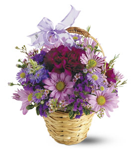 Para todos mis amigos HWE_72771