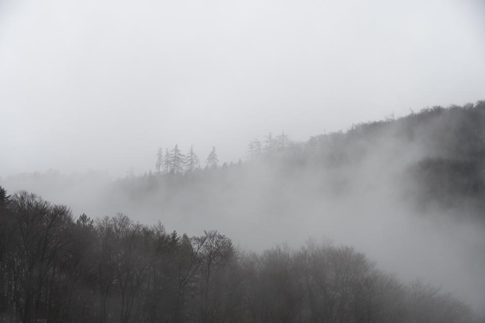 Brouillard 8098