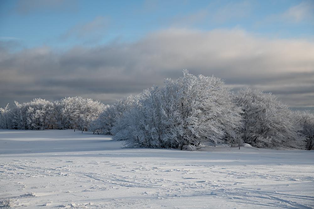 Quelques paysages bien de saison 0452