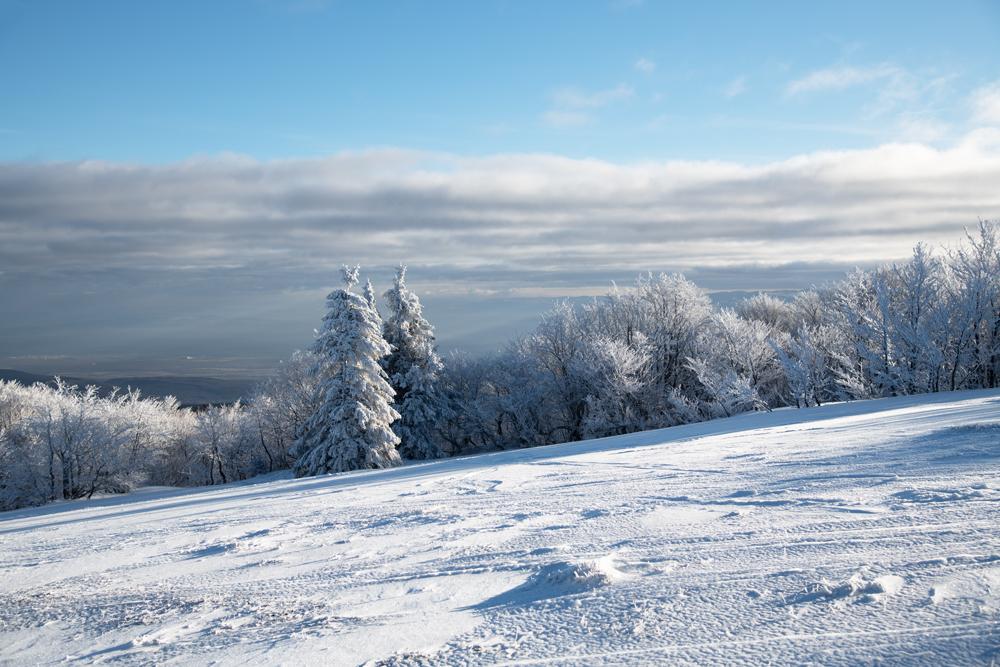 Quelques paysages bien de saison 0474