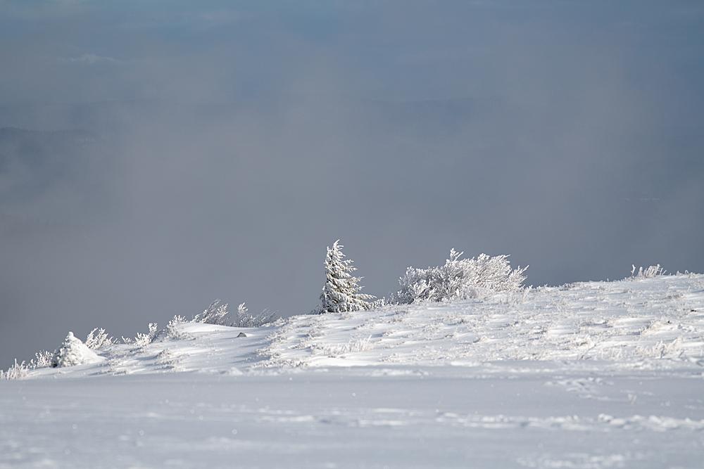Quelques paysages bien de saison 0852