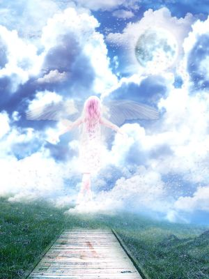 Selected Art, Music, Pictures, Videos & Quotes to Illustrate What Heaven Will Be Like! Little_girl__flying_to_heaven_by_Heaven666