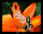 Happy Birthday, Blue Moon Tiger_Lily_by_babypixie