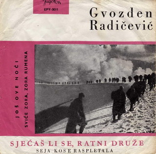 Gvozden Radicevic - Diskografija VmNsAaRU