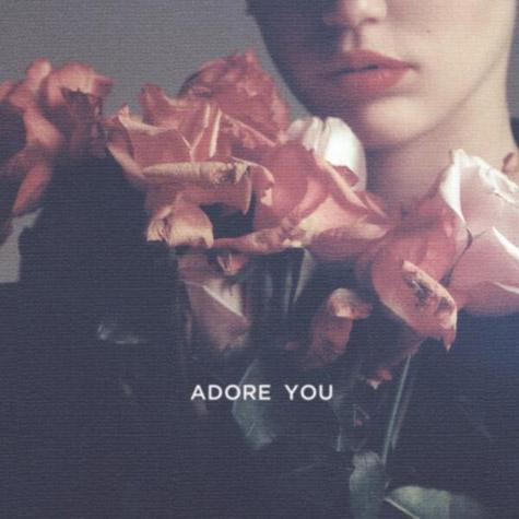 Boot & Immune » ''Singles'' [GANADOR: Wrecking Ball] Miley-adore-you