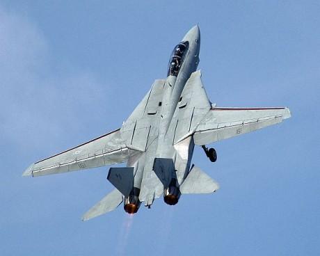 سر اختيار ايران للاف14 على حساب الاف15 !! F-14-460x368