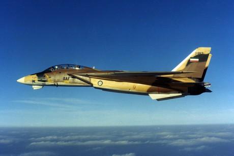 سر اختيار ايران للاف14 على حساب الاف15 !! IRIAF-F-14-460x306