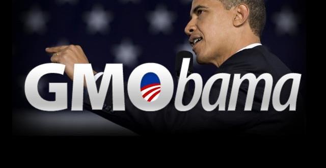 Etats - Le Monsanto Protection Act GMObama-640x330