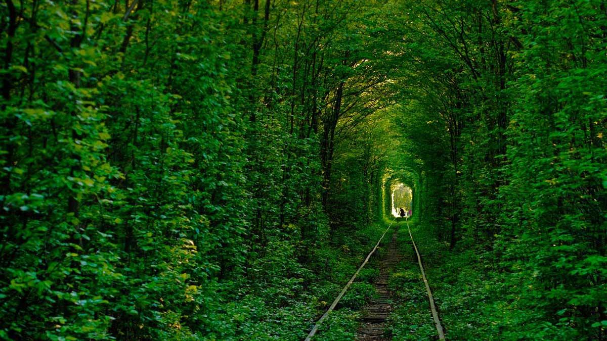 Самые интересные места на планете Tunnel-of-love-in-klevan-ukraine