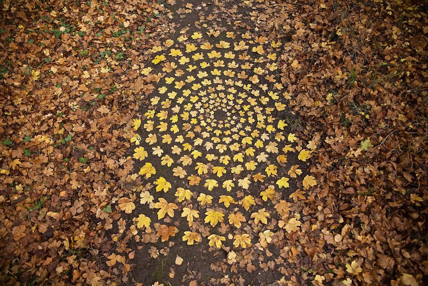 Artist Spends Hours Creating Natural Mandalas, And He's Hoping You Will Find Them James-Brunt-Nature-Mandalas-10