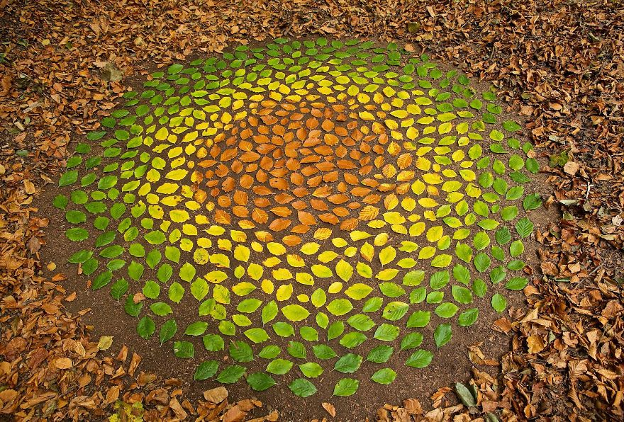 Artist Spends Hours Creating Natural Mandalas, And He's Hoping You Will Find Them James-Brunt-Nature-Mandalas-3