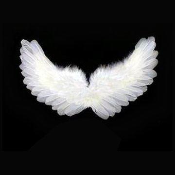 Ostavite poklon nekome sa foruma... Wings
