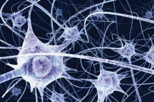 Theoretically, We Are Crystal Beings. Here's Why: 173_neurons-300x200