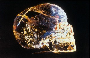 Theoretically, We Are Crystal Beings. Here's Why: Craneos_cristal06_01-300x194