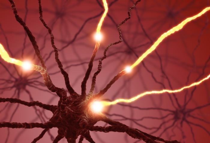 Epigenetics: The Secret To Maintaining A Healthy Mind, Body, & Spirit Serotonin