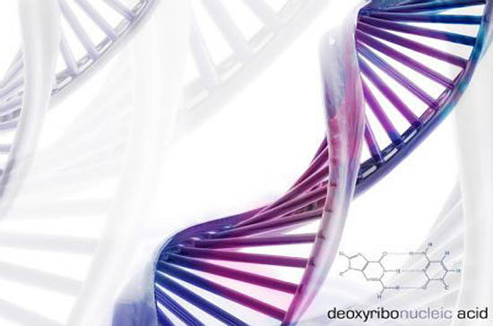 Scientists Discover That DNA Can Be Reprogrammed With Words And Frequencies Dna-3