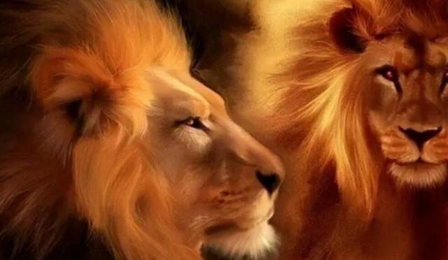 8.8.8. ~ Lions Gate 11796400_1170622082964518_4789565155647619450_n-640x372