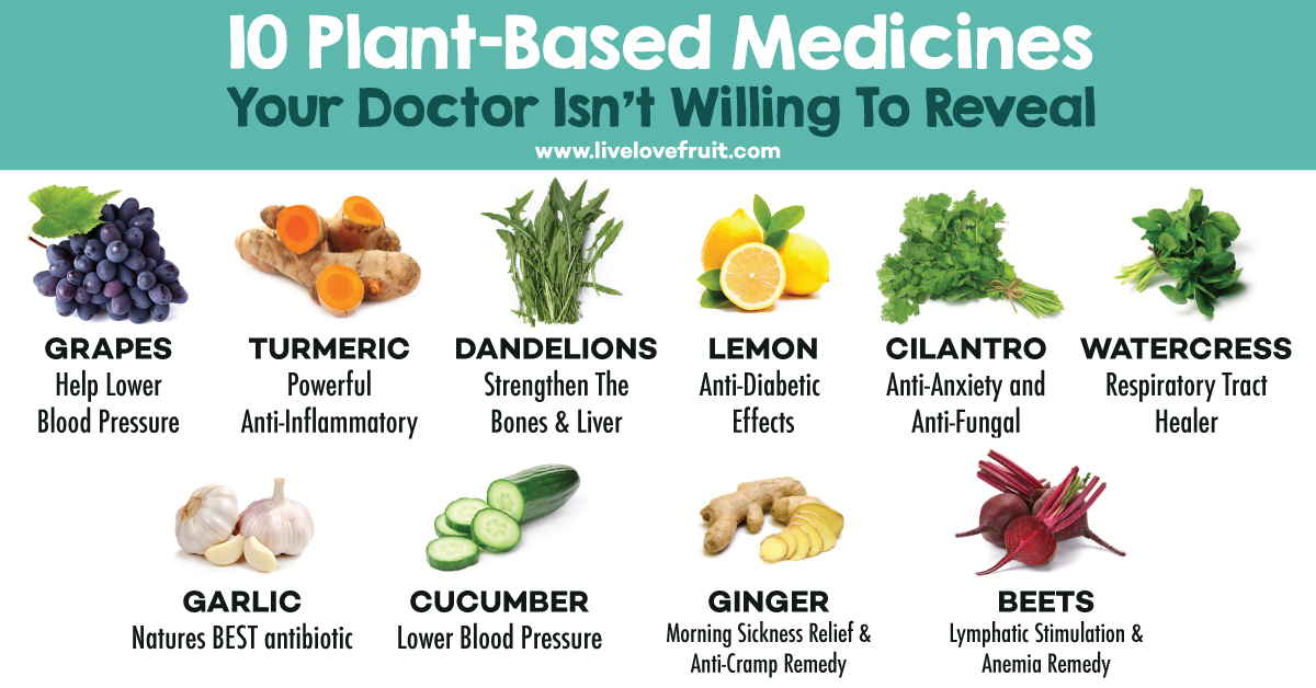 """This Doctor Opened Up a """"Farmacy"""" to Use Food as Medicine 0Plant-based-medicines"""