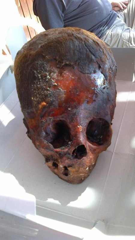 These Ancient Elongated Skulls Are NOT HUMAN Baby-Elongated-Skull-From-Peru-450x801