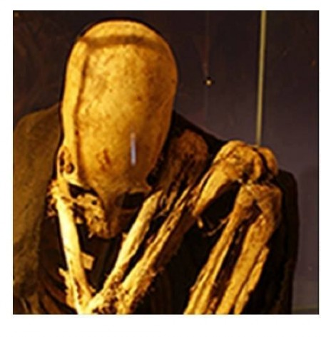 These Ancient Elongated Skulls Are NOT HUMAN Nephilim-Skull-Lake-Titicaca-Posted-by-Brien-Foerster-on-Facebook-450x473