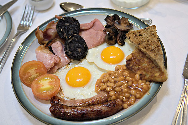 Need The Doc's Opinion Breakfast