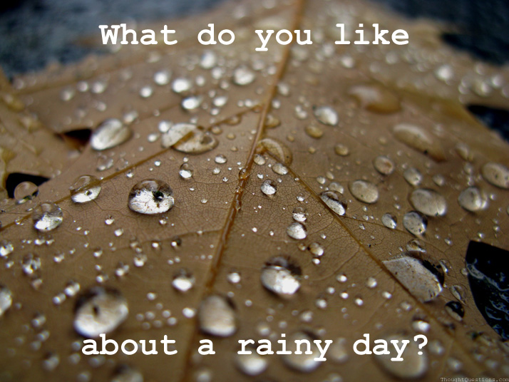 What Do You LIke About A Rainy Day? 430