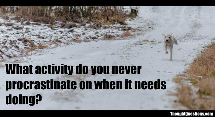 What activity do you never procrastinate on when it needs doing? 1362