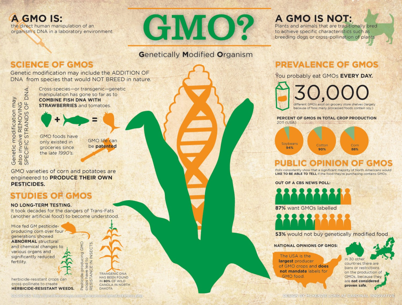 Genetically Modified Organisms (GMO) Gmo-genetically-modified-organism_50290d5e92a11_w1500