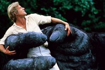 КИНГ КОНГ ЖИВ ! / King Kong lives ! (1986) Линда Гамильтон 8af39f288994068