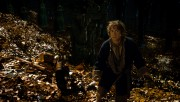 Хоббит Пустошь Смауга / The Hobbit The Desolation of Smaug (2013) D1311a408190088