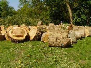 Izrada ogrijevnog drva - Page 13 Fcb024462707997