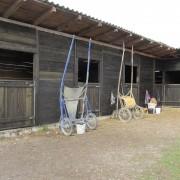 Miješana pasmina konja 8b0e55466876845